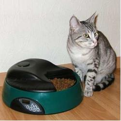 Автокормушки и поилки для кошек